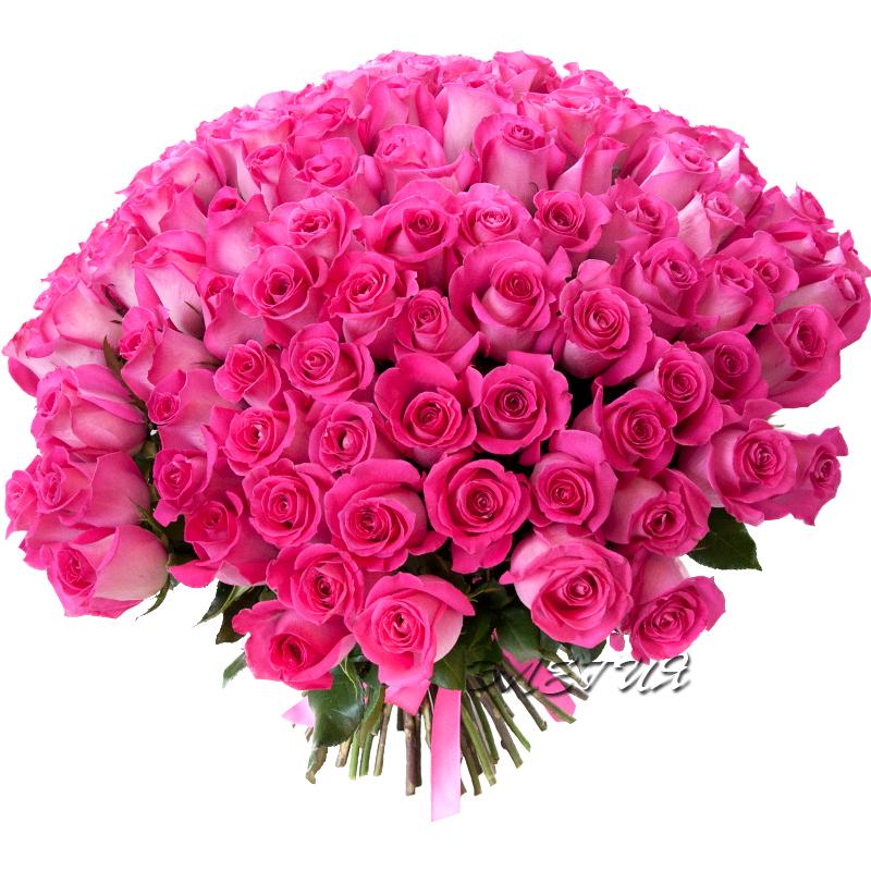 Розы букет картинки
