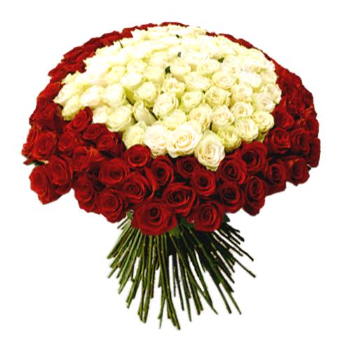Букет розы клеопатра фото, букете