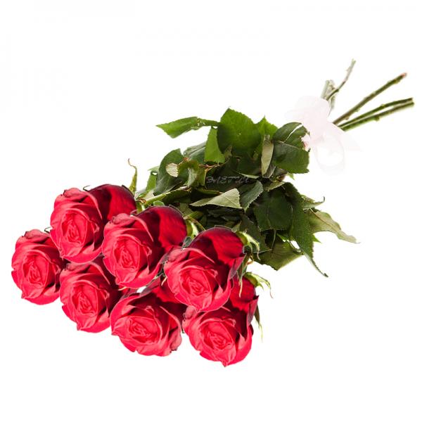 Купить уральские розы по акции на уралмаше и эльмаше сухоцветы краснодар купить