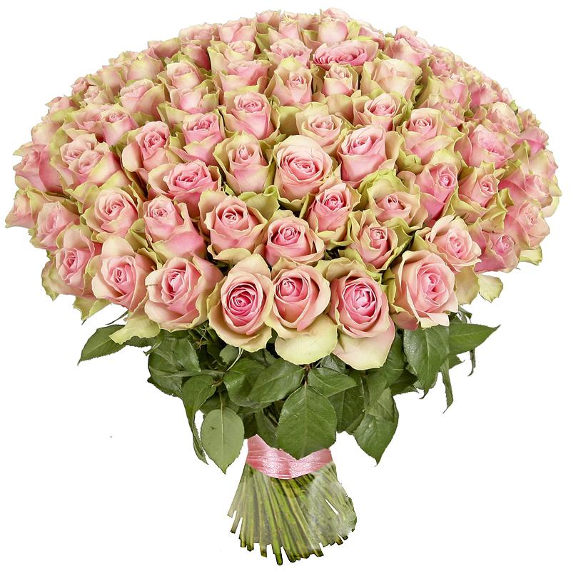 101 роза недорого в москве