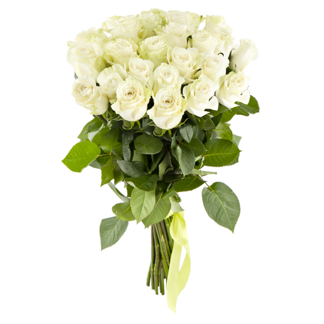 цветы элегия фото