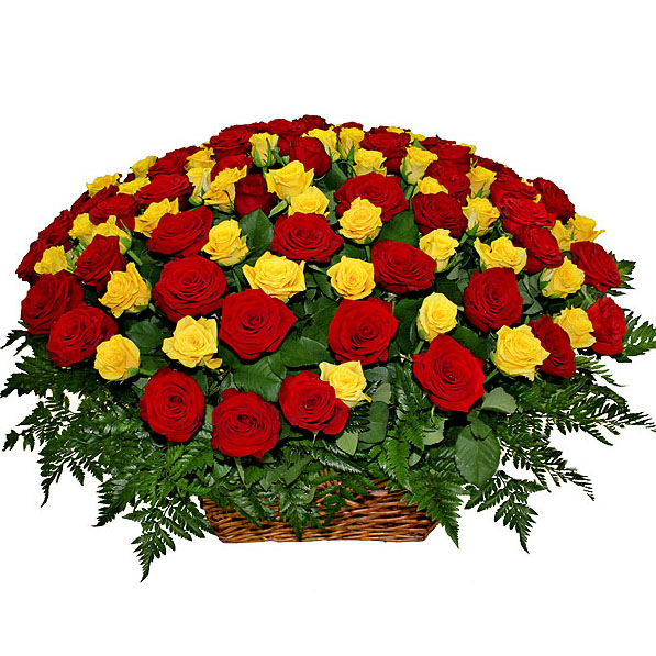 Купить цветы оптом белая дача мимозы купить